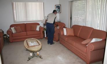 Domestic Pest Control